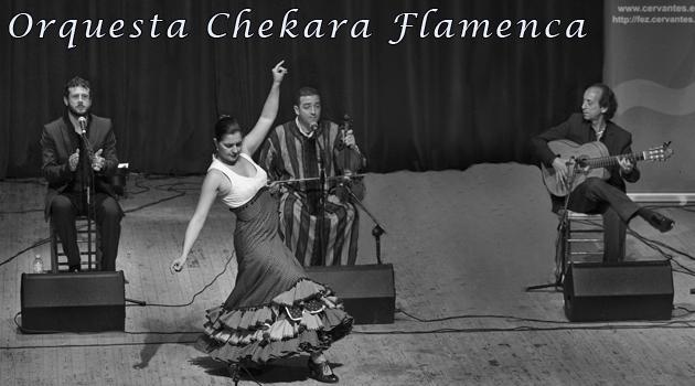 Orquesta Chekara Flamence, contratación, trío, cuarteto o completa